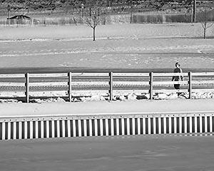 A Walk in the Park, taken in Roosevelt Park, Edison, NJ.